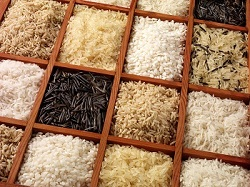 ICC WEBINAR: A new protocol for Rice Variety Identification